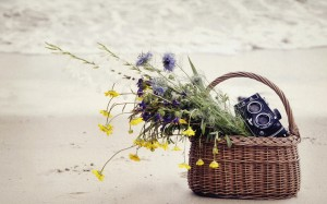 basket flowers camera sand sea beach hd wallpaper
