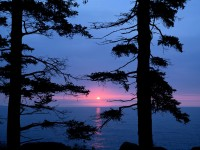 Atlantic Sunrise, Acadia National Park, Maine