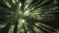 Beautiful natural nature landscapes photography wallpaper