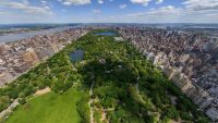 Gorgeous panorama of central park wallpaper