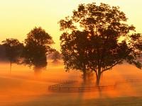 Horse Farm Sunrise, Versailles, Kentucky