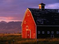 Morning Sunshine, Montana