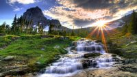 Nature hd background wallpaper
