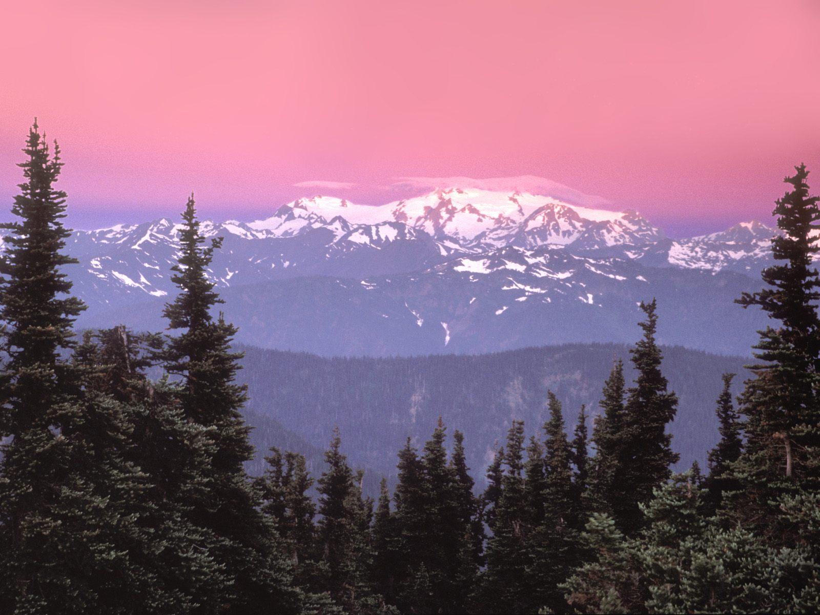 Sunrise Over Mount Olympus,  Olympic National Park, Washington