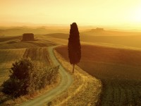 Tuscan Landscape at Sunrise, Italy
