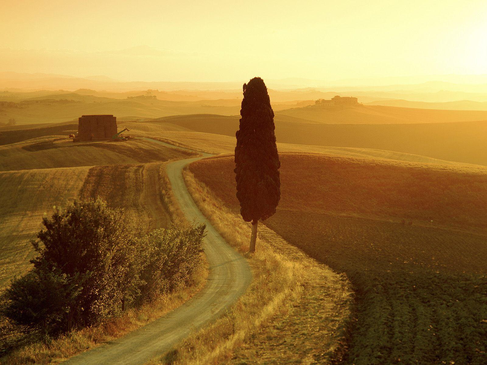 Tuscan Landscape at Sunrise, Italy