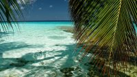 south male atoll wallpaper