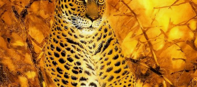 Fantasy Art Animal Leopard Wallpaper