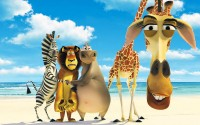 Funny animals cartoon wallpaper