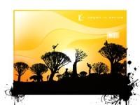 Nature HD sunset light wallpaper