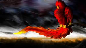 Parrot cool