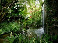 Enjoy A Meditation Experience in Kuala Lumpur Secret Garden